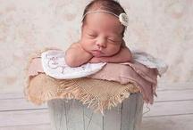 Newborn / by Marie-Claude Adams