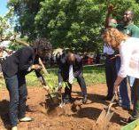 Edible School Yard Project