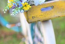 Kukat ja polkupyörä