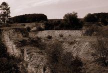 Wanderung durch historische Steinbrüche / artenreiche Flora und Faune verbunden mit jahrhundertealten Steinbrüchen