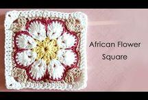 Afrika Çiçekler