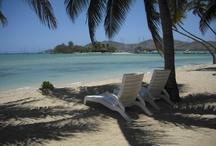 Fiji / our trip to Fiji