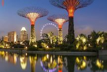 City Guides / Travel City Guides