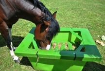 Slow Feeder Systems for Horses / Horses naturally are design to trickle feed so the ideal way to feed them is with a slow feeder. Here are a collection of slow feeders plus the Hay Saver - which is the first slow feeder to be manufactured in the UK. See more at www.horsefeeders.co.uk