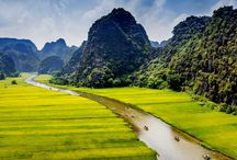 Ninh Binh landscape / Ninh Binh province is famous for the landscapes and tourism such as Hoa Lu - Tam Coc - Bich Dong, Bai Dinh pagoda, Trang An complex, Cuc Phuong National park, Van Long - Kenh Ga, Thung Nang, Thung Nham...