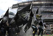 Fly Eagles Fly / My football team / by Corrie Bridgmon