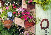 Gardens / by Tammy Snow Cornelius