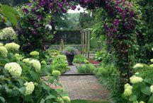 Gardening Info