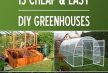 Easy green house