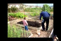 Gardening With Kids / Anything Kid and garden Related