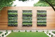 Cavida/Vertical Gardening