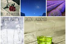 Green Laudemio