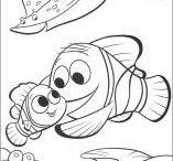Nemo party pics