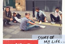 THE STORY OF OUR LIVES / The One Direction lifestyle is the Story of Our Life