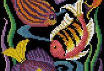 barevné ryby