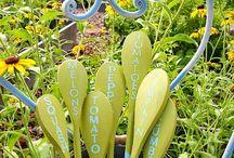 Chal's Fruit & Veggie Garden / by Rachel Lezcano