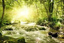 Naturwunder / Meine persönliche Zusammenstellung von schönen Bildern der Natur.