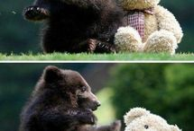 Teddy Bears / by Karen Dayton
