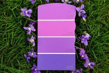 A Card for Every Color / Everything you see, Sherwin-Williams has created a paint to match.  / by Sherwin-Williams