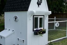Chicken coop / by Jennifer McGee