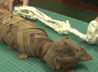 3D Printing Antiquities / by Stratasys 3D Printing