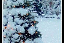Winter / by Linda Goodwin