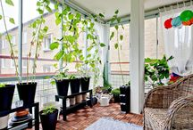 Indoor Home Garden