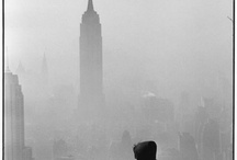 New York / by Vaish Srinivasan