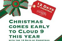 """12 Days of Christmas on Cloud 9 / We are starting our """"12 Days of Christmas"""" promotion in-store and online for special deals on some of our latest and greatest toys!  The deals are great, and are available the day they are posted only!  Check back every day!"""