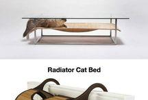 Kočičky a jejich královstvi´