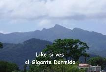 Puerto Rico / by Carmen Alicea