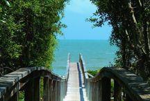 St George , Florida / Beach house / by Paula Traylor