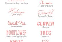 Fonts / by Rachel Rose