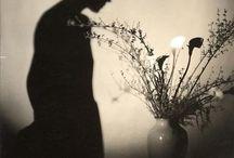 Vol 7 Masters of Photography / Vol 7 Masters of Photography: Edward Steichen, Alfred Stieglitz,  Paul Strand,