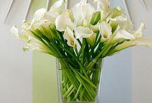 Wedding flower & place & idea