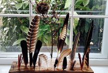 Feather stand/display