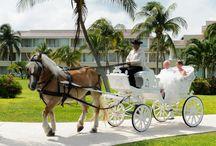 Moon Palace Weddings! / Moon Palace Resort and Spa. Destination Wedding Travel