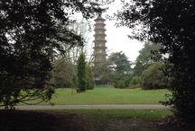 Kew Gardens Photos AS Graphics 2014-15