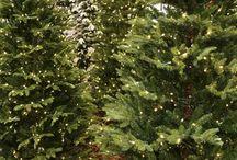 Kunstige juletrær / Kunstige juletrær