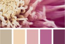 Bedroom Palettes / by Sarah Doyle