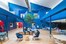 Office & Design / by Daniel Guzmán