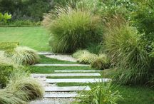 EGA response - grass