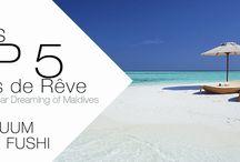 TOP 5 Des Choses à faire aux Maldives