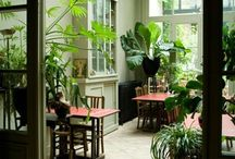 Favorite Places & Spaces / by Nathelle Nelson