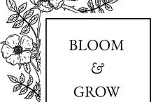Bloom and Grow creations