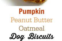 dog biscuits/treats