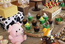 Festa de fazenda
