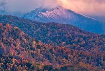 Waynesville, NC / by Stacy Walden