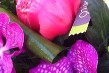 Mariló floristas / Arte floral