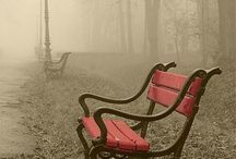 Benches....